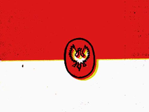 Bandera projektu płk. marynarki Bogumiła Nowotnego z 1919 r. – rekonstrukcja barwna KJG 1989