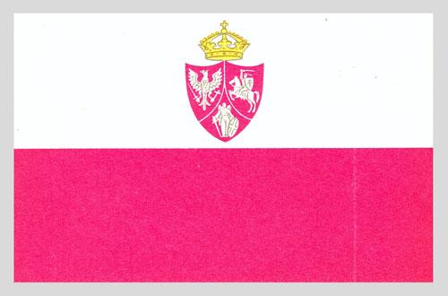 Bandera powstańczej floty polskiej z 1864 r.