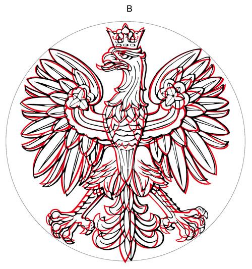 różnice w rysunku między projektem B a rysunkiem wyjściowym orła