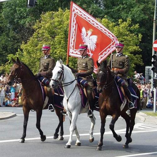 Defilada Wojska Polskiego w Alejach Ujazdowskich w 2007 r.
