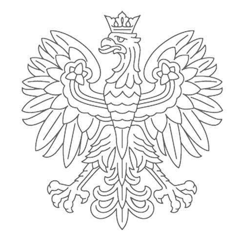 orzeł z identyfikacji MSZ